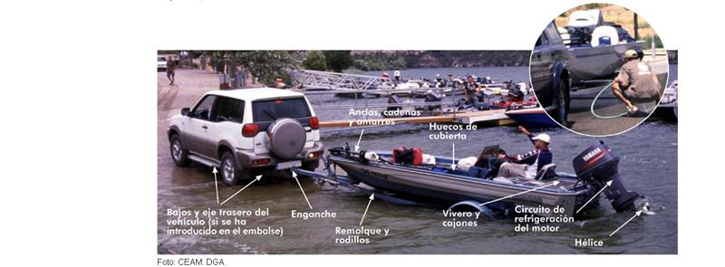 Gente pescando aplicando las buenas prácticas