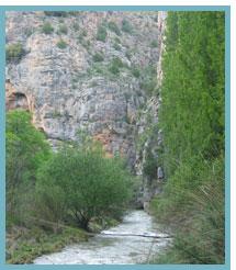 Imagen de los Estrechos del río El Ebrón- Río Turia