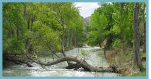 Imagen del río Guadalope , del paraje La Algecira