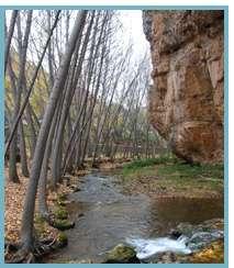 Imagen de las hoces del río Mesa.