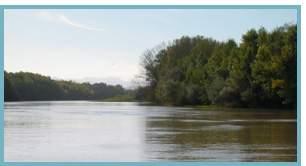 Sotos y Mejanas del río Ebro.