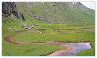 Río Aragón-Subordán. Aguas Tuertas
