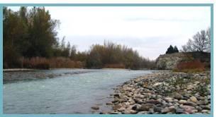 Río Gállego. Ontinar - Zuera