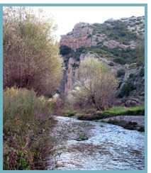 Imagen del Río Huerva, aguas arriba del embalse de las Torcas.