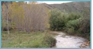 Río Jalón en Villanueva de Jalón.