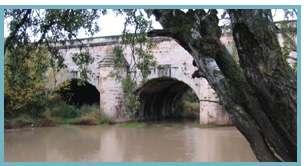 Imagen del río Jalón.