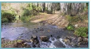 Imagen del Barranco del Val del río Queiles.