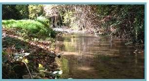 Imagen del río Queiles en el municipio de Los Fayos
