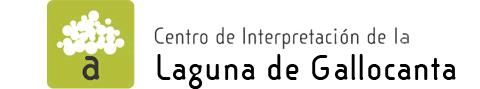 banner_gallocanta