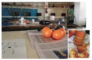 Primer plano de unas naranja en una cocina. En una imagen superpuesta están cortadas y exprimidas.